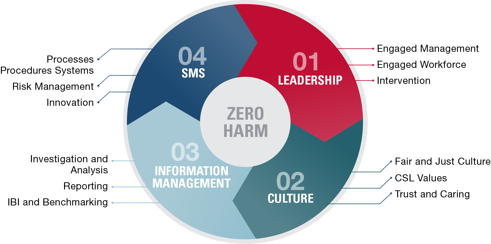 Safe Partner model (chart)